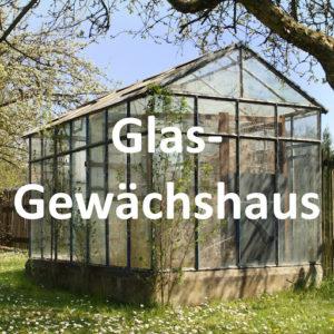 Glas Gewächshaus kaufen